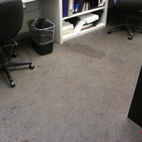 Carpets- Before