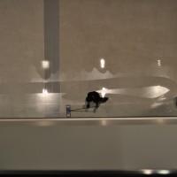 Terrazzo Aerial Waxing